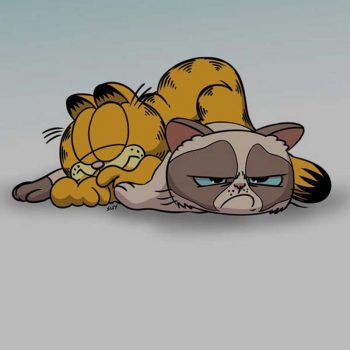 garfield_grumpy-cat2